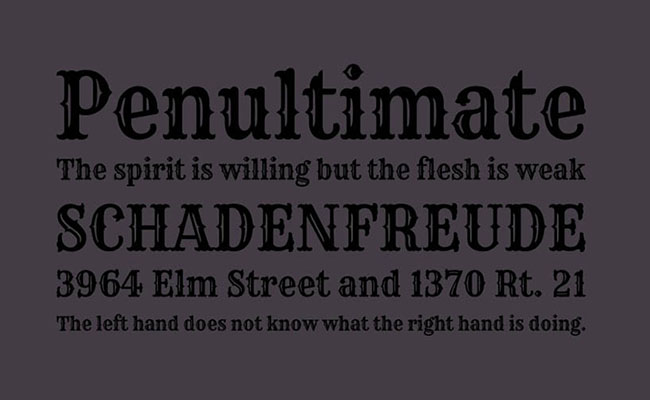 Rye Font Family Download