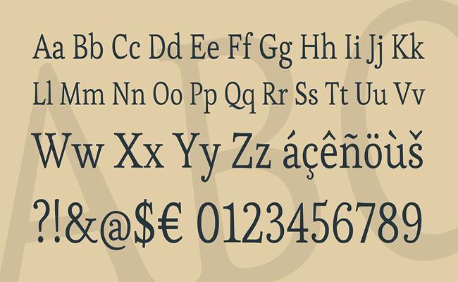 Esteban-Font-Family-Download