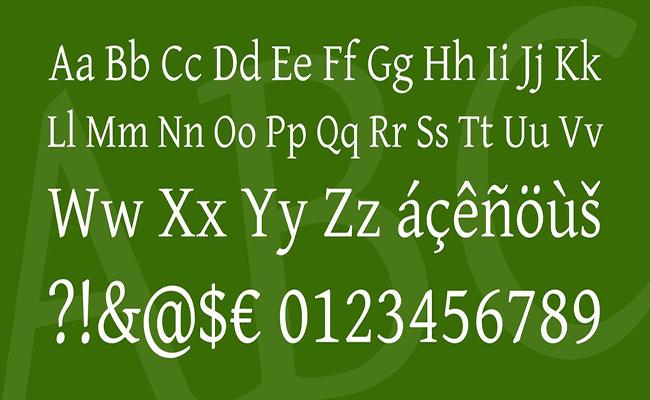 Gentium-Basic-Font-Family-Download