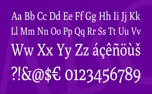 Poly-Font-Family-Download