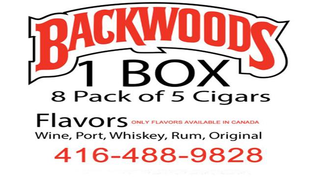 Backwoods-Font-Family-Download
