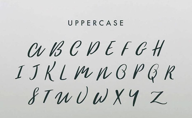 The-Woodlands-Font-Family-Download