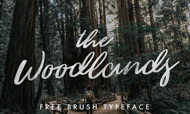 The Woodlands Font Family Free Download