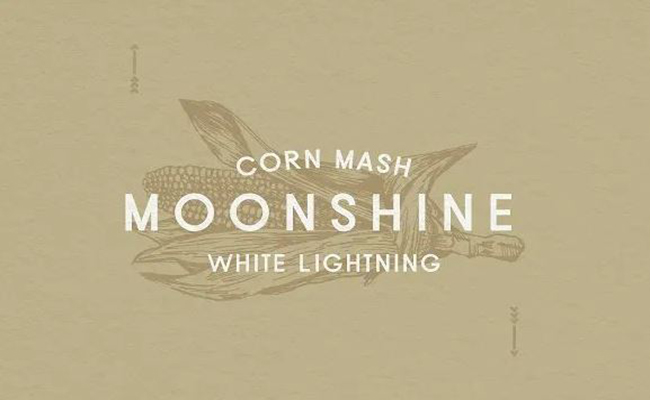 Moonshine Font Family Free Download