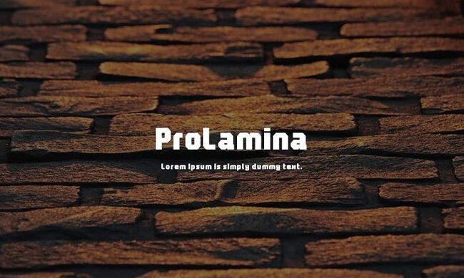 Prolamina Font Family Free Download