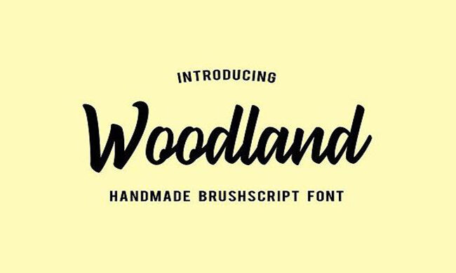 Woodland Font Family Free Download
