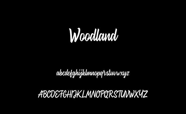 Woodland Font Free Download
